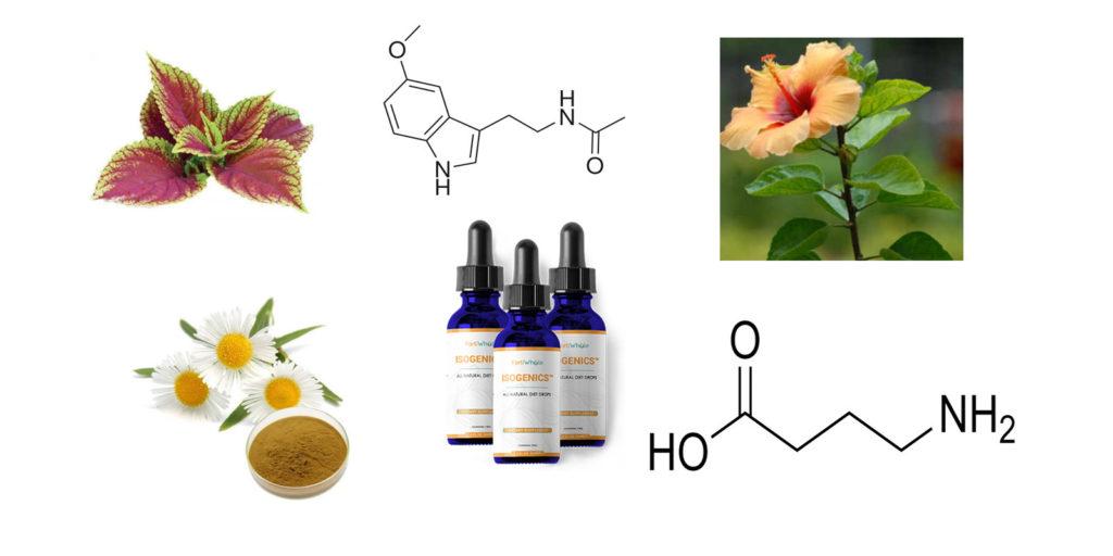 Isogenics Tonic Ingredients